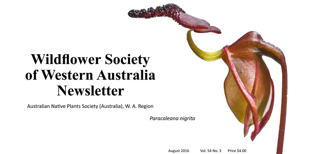 Newsletter now available!