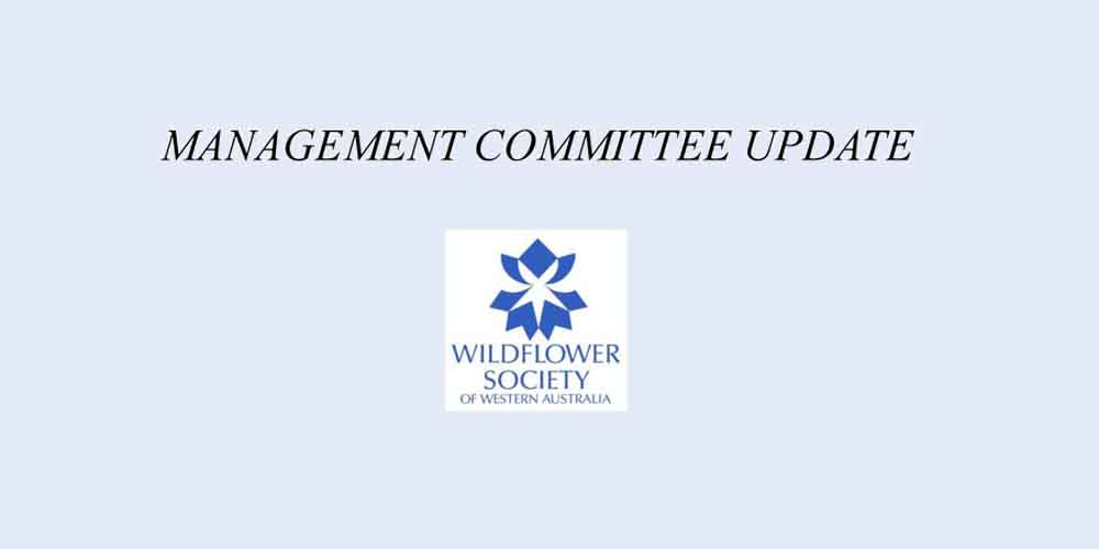 Management Committee Update – February