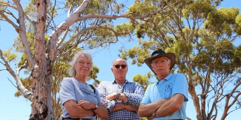 Save trees on the York Merredin Road
