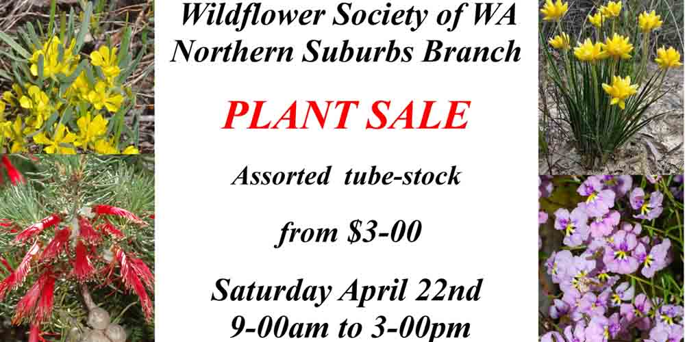 Plant List now available