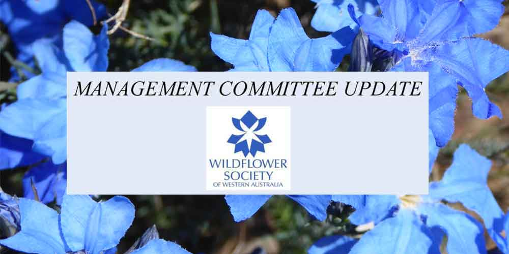 Wildflower Society – Members Update – October