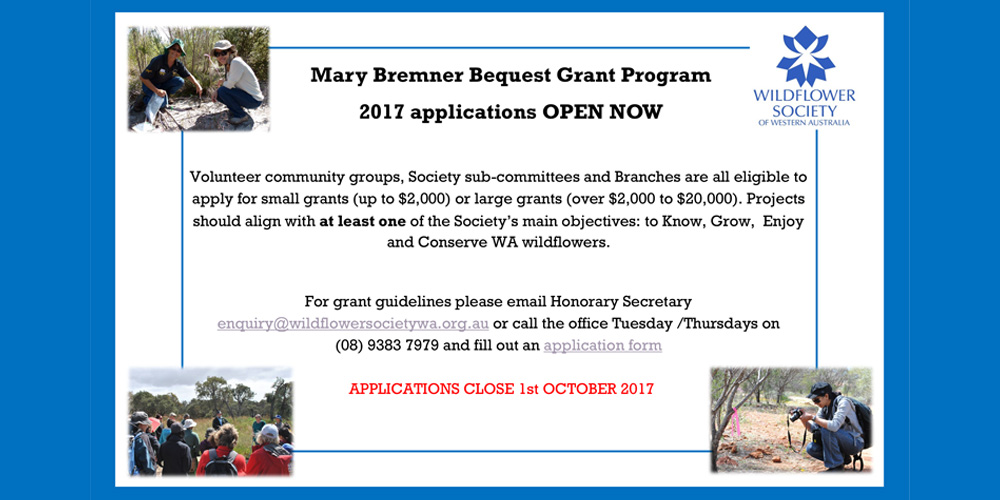 The Mary Bremner Bequest Grant Programme is Open