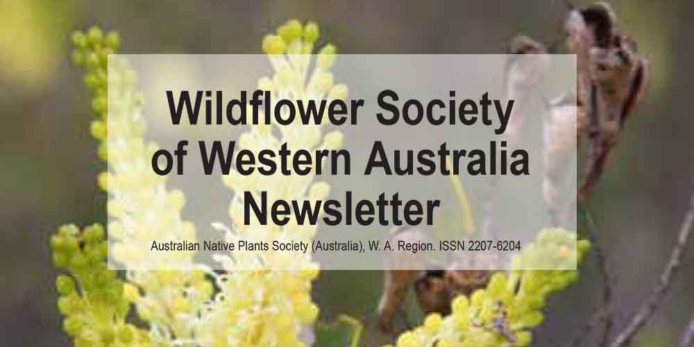 Newsletter now available – Members Only