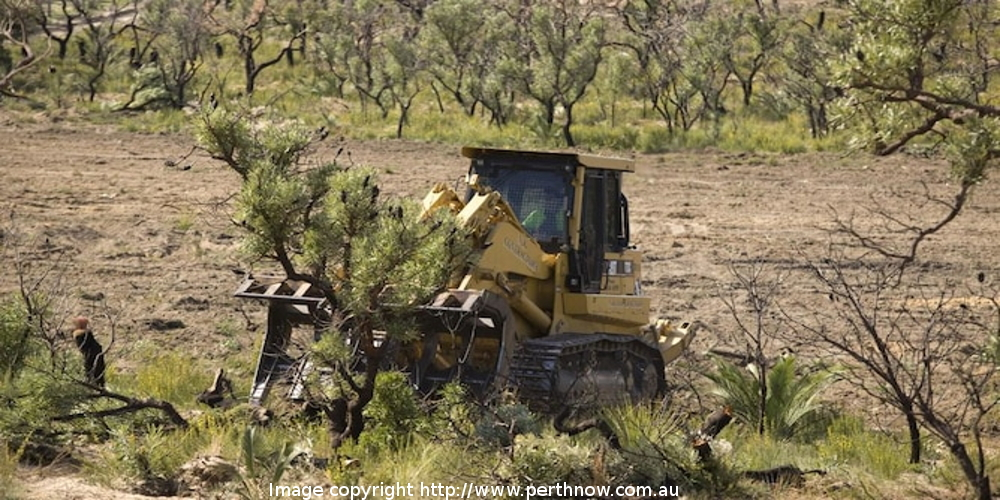Land clearing: the big issues