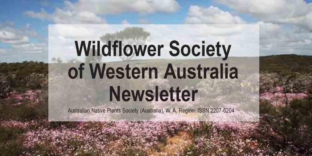 Newsletter Now Online – Members Only