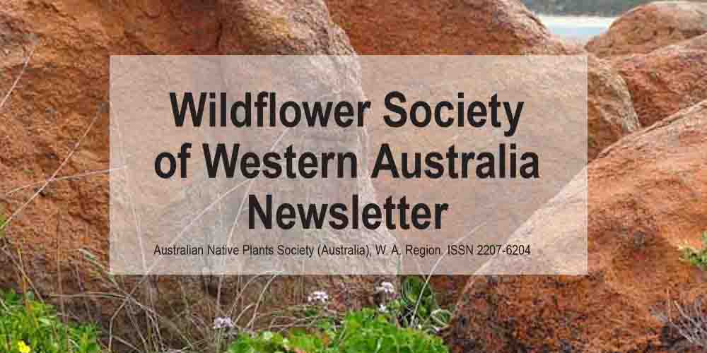 Newsletter Now Available